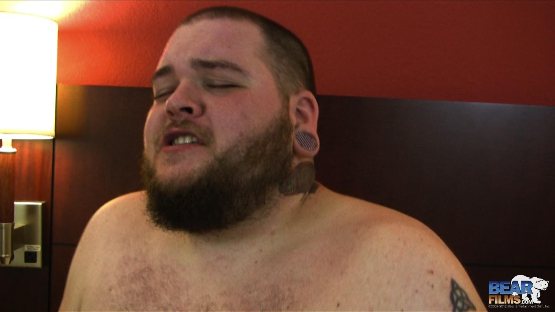fat gay bear