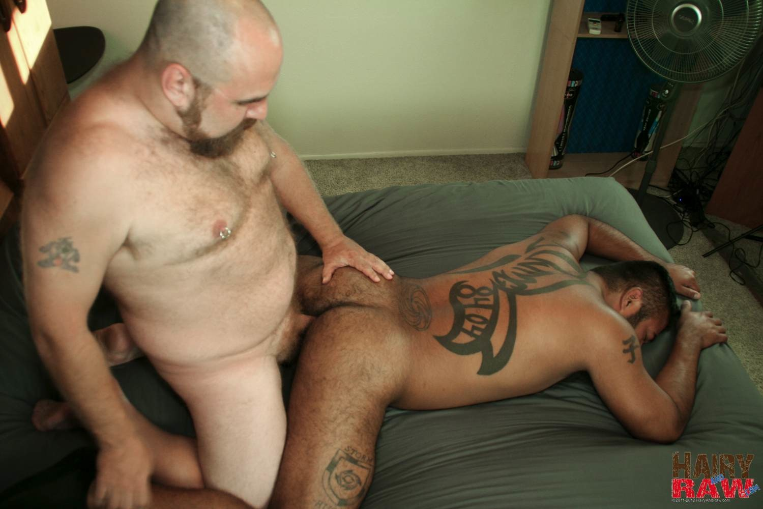 Gay Hairy Interracial Sex Pictures