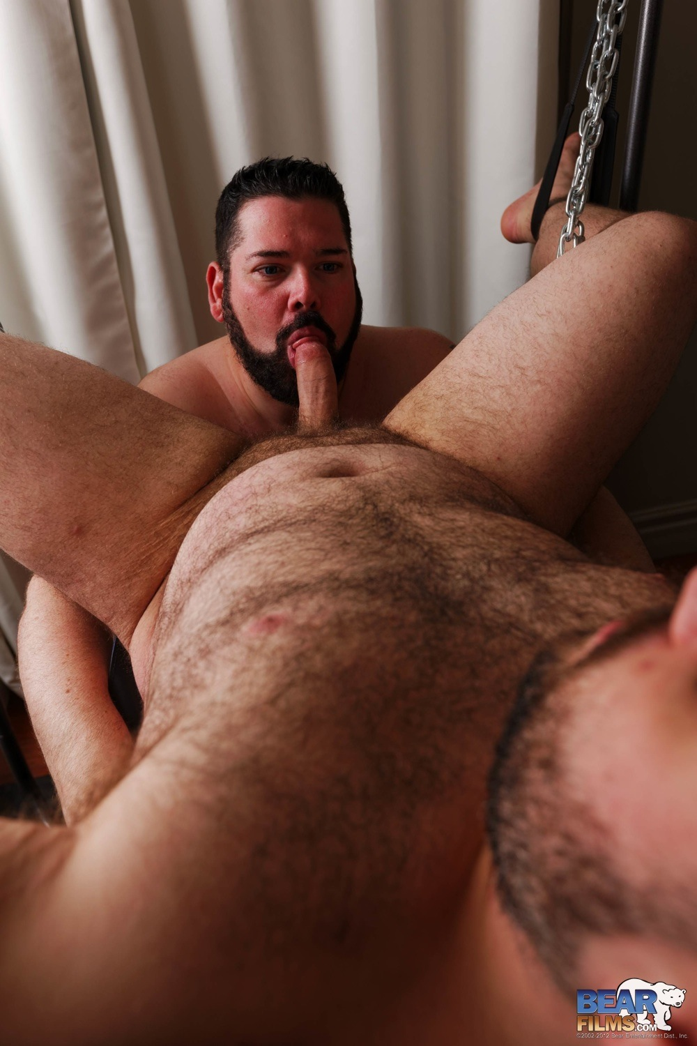 Bear-Films-Mathias-Cubst-and-Ourson-Swells-Chubby-Bear-Gets-Fucked-in-a-Sling-Amateur-Gay-Porn-10 Amateur XL Chubby Bear Gets Fucked And Rimmed In A Sling