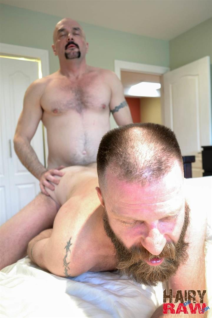 Hairy and Raw Troy Collins and CanaDad Masculine Hairy Daddies Fucking Bareback Amateur Gay Porn 13 Hairy Masucline Daddies Flip Flop Fucking Bareback