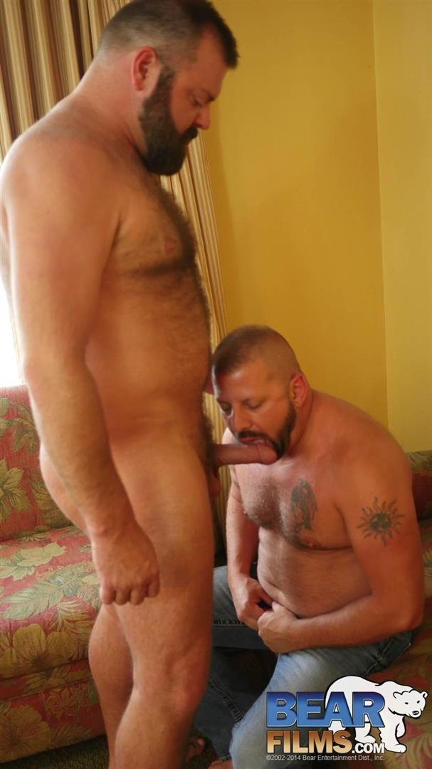Bear Films Kroy Bama and Cooper Hill Hairy Chubby Bears Fucking Bearback Amateur Gay Porn 15 Hairy Chubby Bears Kroy Bama and Cooper Hill Raw Fucking